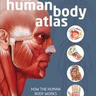The Human Body Atlas How the human body works