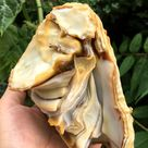 Natural Agate Geode Stone/Artistic pictogram agate/Agate Stone Rocks/Agate Druzy Cluster/Home Office