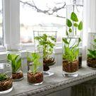 55 Indoor Water Garden Ideas That Fresh Your Room - Matchness.com