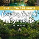 The Ultimate Guide To Cenotes Cristal Y Escondido In Tulum