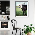 Kitchen Wall Art, Cow Decor, Wall Art for Kitchen, Cow Wall Decor, Country Kitchen Decor, Cow Photo, Green Kitchen Art, Farm Wall Decor