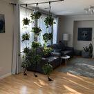 Adjustable plant hanger multiple plants display room   Etsy