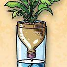 Best 9 Simple Self-Watering Planters to Reduce Gardeners Workload