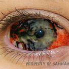 Best Contact Lenses