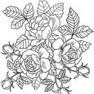 15 Flower coloring pages, Coloring Pages instant download, Floral, coloring pages, Coloring Book, Adult Coloring Book