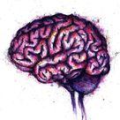 Brain Painting  Pink Watercolor  Ink Brain  Office Art   Etsy