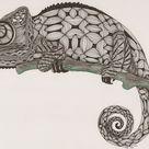 chameleon Ben Kwok