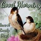Beautiful Good Morning Sunday