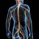 MSG Causes Nerve Cell Damange - Complete Oriental Medical Care