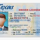 Texas Driver License Psd Template - Texas Driver's License, HD Png Download , Transparent Png Image - PNGitem