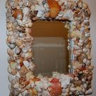 Sea Shell Mirrors