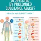 How Can the Nervous System Be Affected by Prolonged Substance Abuse?