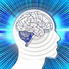 NSP Brain Health Products Comparison   Nature's Sunshine