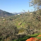 On the rolling hills of Tuscany country house for sale. Lucca, Real estate Italy, Tuscany property.   Lucca Villa - Real Estate and Social Media Marketing