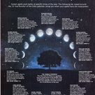 The Moon Cycle