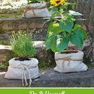 Einzigartige Gartendeko: Pflanzgefäße aus Beton selber machen