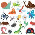 Ensemble D'insectes Mignon. Insectes De Dessin Animé.
