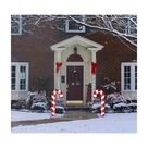 Advanced Graphics Candy Cane Yard Sign Set of 2 - Advanced Graphics - 3498
