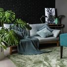 Wenig Licht – Pflanzen für dunkle Räume