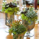 Lustige Blumenkasten Ideen - aus alten unbrauchbaren Materialien
