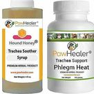 eBay Trachea Soother Syrup Bundle with Trachea Support Phlegm Heat   Natural