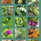 Bile Flow: Top 15 Herbs to Support Liver & Gallbladder - DrJockers.com