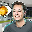 To the 'literal moon'? Elon Musk SpaceX tweet gives Dogecoin a 35% lift-off