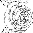 Rose And Leaf Coloring Pages