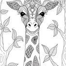Handgetekende Giraf
