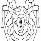 Cute Spider   Worksheet   Education.com