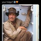 Indiana Jones Memes For The Adventurer In All Of Us