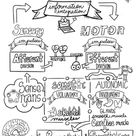Divisions of the Nervous System Sketch Notes,Student Notes, incl FIB Version!