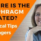 Where is the Diaphragm Located What Does the Diaphragm Do