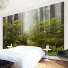 Carta da parati camera da letto • Sentiero nebbioso nella foresta