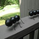 Golf Ball Ants