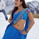 Shruti Haasan Hot Sexy South Indian Actress in Blue Saree