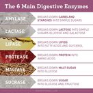 Digestive Enzymes: Getting the Most From Your Food | Amy Myers MD