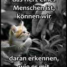 EBENBLATT Katzen