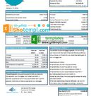 USA Springside Mortgage bank statement template in Excel and PDF format