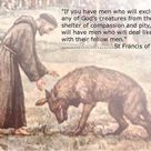 St Francis Quotes