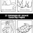 Endangered Animals Coloring Pages: Animals from North America, the Rainforest & the Ocean | Woo! Jr. Kids Activities
