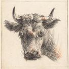 Pieter Gerardus van Os, 1786 - Head of a cow - fine art print - Poster print (canvas paper) / 50x50cm - 20x20