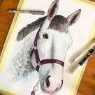 Pet Portrait Commissions   Dog, Cat, Horse, Watercolour, Horse, Painting, Personalised, Pet Lovers, Gift Ideas, Custom, Pet Gifts, Dog Mum