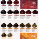 Lakme Collage Color Chart Online
