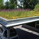 Anleitung in 7 Schritten: So einfach lässt sich ein Dach begrünen
