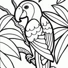 Bird Coloring Pages for Kids Free Printable Coloring Pages