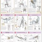 9 Different Butt Workout for Women Anatomy