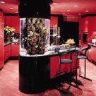 Spectacular Aquariums, Personalizing Interior Design with Colorful Glass Fish Tanks