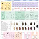 Catalogue of Human Features by Majnouna on DeviantArt