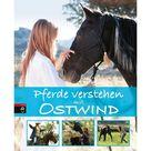 cbj + cbt Verlag Filzstift »Der kleine Drache Kokosnuss: Magische Stifte« online kaufen   OTTO